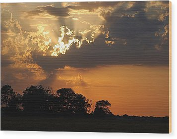 After The Storm Wood Print by Francie Davis
