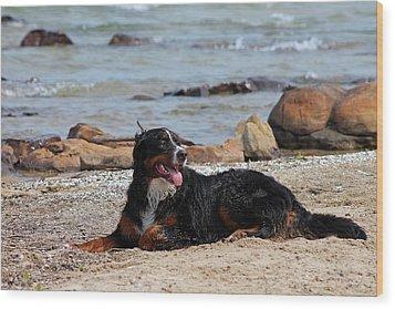 After The Swim Wood Print by Rhonda Humphreys