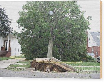 Aftermath Of Hurricane Irene Wood Print by John Telfer