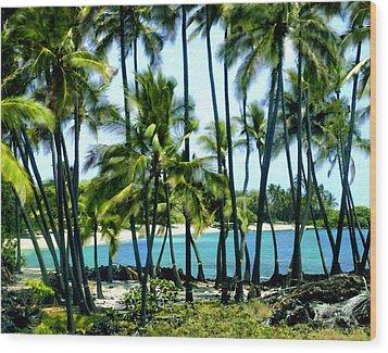 Afternoon At Kakaha Kai Wood Print by Kurt Van Wagner