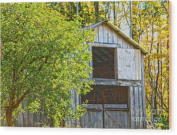 Afternoon Delight Wood Print by A New Focus Photography