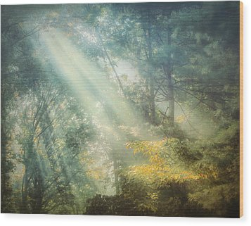 Afternoon Delight Wood Print by William Schmid