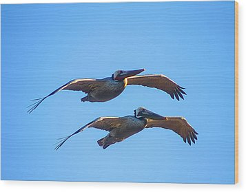 Afternoon Flight. Wood Print by Menachem Ganon