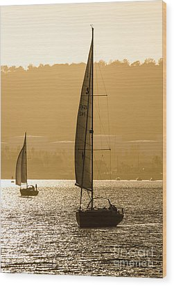 Afternoon Sails A2892 Wood Print