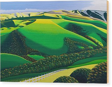 Afternoon Shadows Wood Print by Michael Wicksted