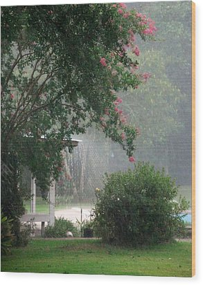 Afternoon Showers Wood Print by N S
