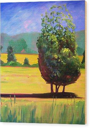 Afternoon Sun Wood Print by Nancy Merkle