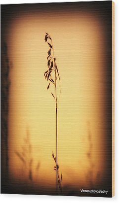 Against The Grain  Wood Print