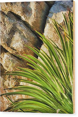 Against The Rocks Wood Print by Scott Campbell