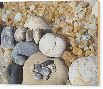Agates Rocks Art Prints Petrified Wood Fossils Wood Print by Baslee Troutman