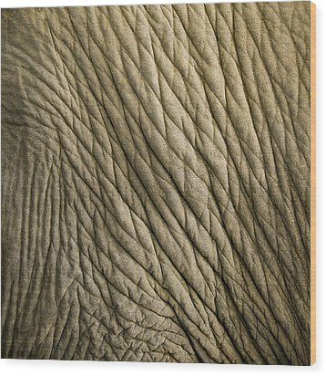 Age Beautiful Wood Print by Steve Smith
