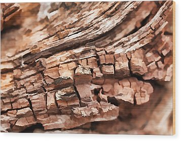 Aged Beyond Perfection Wood Print