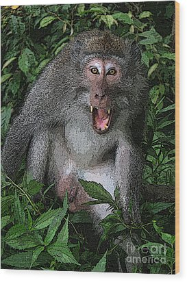 Wood Print featuring the photograph  Aggressive Monkey From Bali by Sergey Lukashin