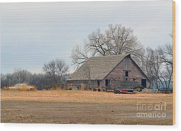 Aging Red Barn Wood Print by Renie Rutten
