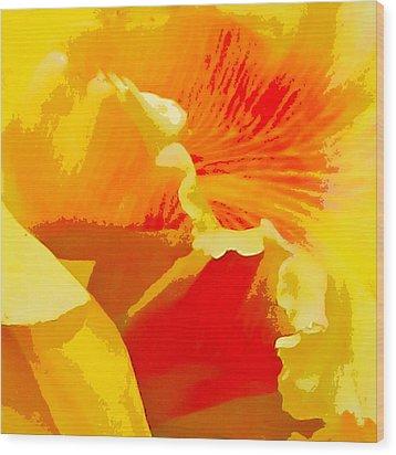 Wood Print featuring the digital art Aglow by John Freidenberg