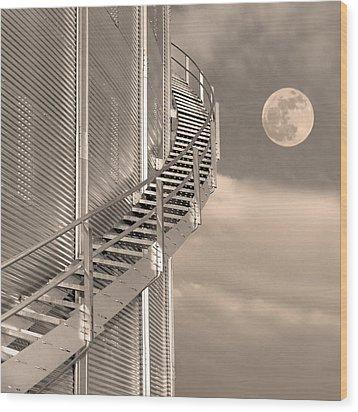 Agri Moon Wood Print