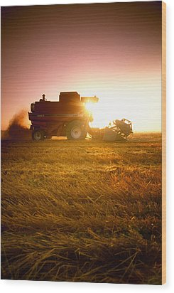 Agriculture - A Combine Harvests Wheat Wood Print by Mirek Weichsel
