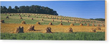 Agriculture - Contour Strips Wood Print by Timothy Hearsum
