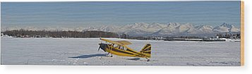Airplane On Ice Wood Print