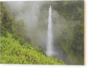 Akaka Falls Akaka Falls State Park Wood Print by Stuart Westmorland