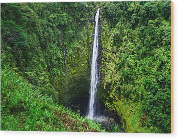 Wood Print featuring the photograph Big Island - Akaka Falls by Francesco Emanuele Carucci