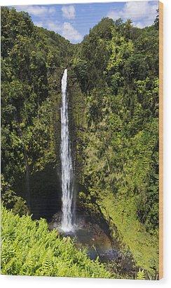 Akaka Falls Wood Print by Mike Herdering