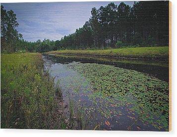 Alabama Country Wood Print