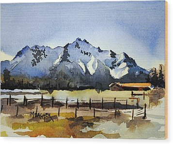 Alaskan Springtime Wood Print by Spencer Meagher