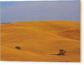 Trees In The Wheat Field Wood Print