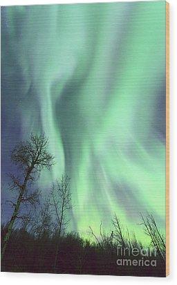 Alberta Aurora Wood Print by Dan Jurak