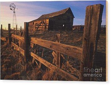 Alberta Homestead Wood Print by Bob Christopher