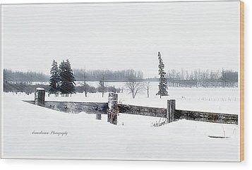 Alberta Winter Wonderland Wood Print by Donna Brown