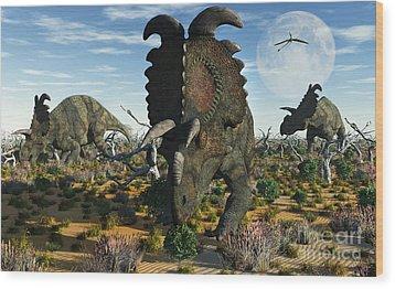 Albertaceratops Dinosaurs Grazing Wood Print by Mark Stevenson