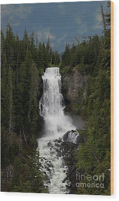 Wood Print featuring the photograph Alexander Falls by Rod Wiens