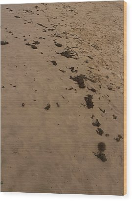 Algae Trail In The Sand Wood Print by Sandra Pena de Ortiz
