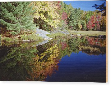 Wood Print featuring the photograph Algonquin Reflection by David Porteus