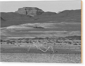 Alien Wreckage Bw - Lake Powell Wood Print by Julie Niemela