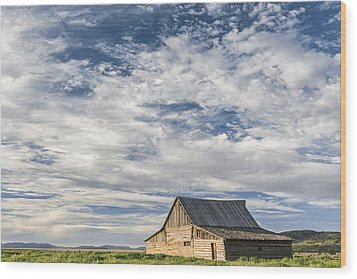 All Alone II Wood Print by Jon Glaser