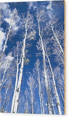 All But Gone Wood Print by The Forests Edge Photography - Diane Sandoval