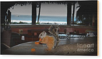 All Inclusive Squirrel Wood Print by Gary Keesler