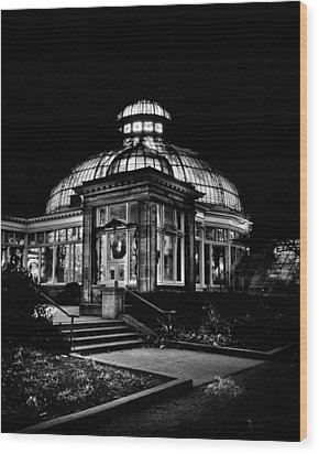 Allan Gardens Conservatory Palm House Toronto Canada Wood Print by Brian Carson