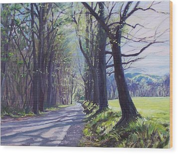 Alleghany Spring Wood Print