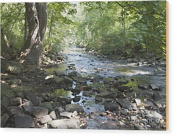 Wood Print featuring the photograph Allen Creek by William Norton