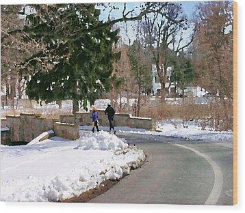 Allentown Pa Trexler Park Winter Exercise Wood Print by Jacqueline M Lewis