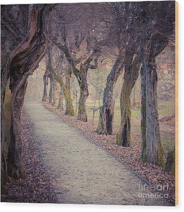 Alley - Square Wood Print by Hannes Cmarits