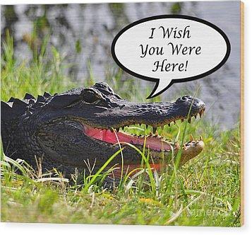 Alligator Greeting Card Wood Print by Al Powell Photography USA