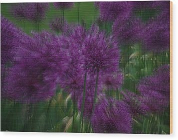 Wood Print featuring the photograph Allium Double Exposure by Ken Dietz