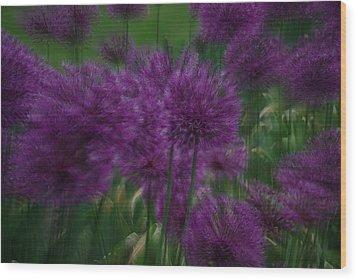 Allium Double Exposure Wood Print by Ken Dietz