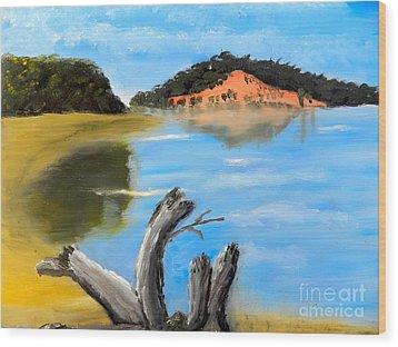 Allonah Beach Tasmania Wood Print by Pamela  Meredith