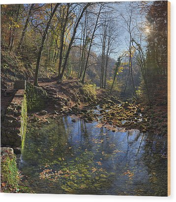 Allondon River Source Wood Print by Patrick Jacquet